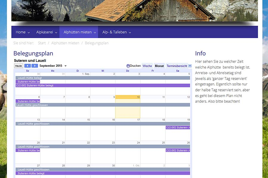 Ansicht Google-Kalender